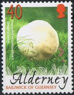 Alderney 2004 Mushrooms d