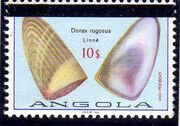Angola 1981 Sea Shells Overprinted i