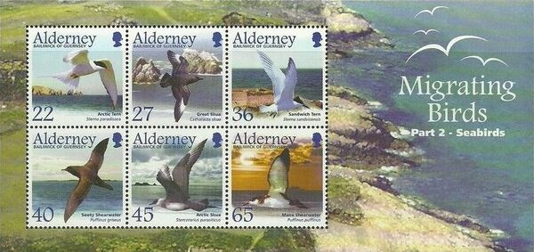 Alderney 2003 Migrating Birds Part 2 Seabirds g