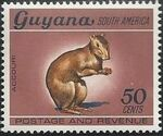 Guyana 1968 Wildlife k