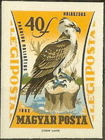 Hungary 1962 65th Anniversary of the Agricultural Museum - Birds of Prey j