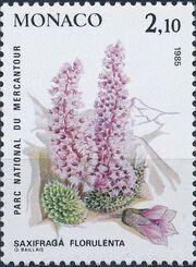 Monaco 1985 Flowers in Mercantour National Park b