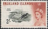 Falkland Islands 1960 Queen Elizabeth II and Birds l