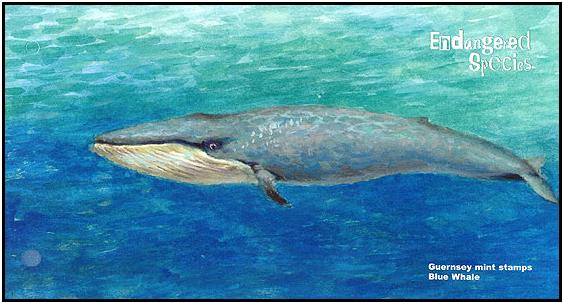 Guernsey 2011 Endangered Species - Blue Whale c