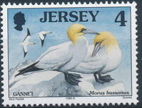 Jersey 1998 Seabirds and waders (3rd Issue) a
