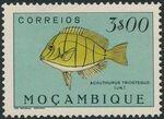 Mozambique 1951 Fishes l