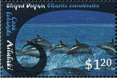 Aitutaki 2012 Whales & Dolphins h