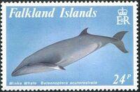 Falkland Islands 1989 Whales b