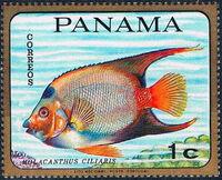 Panama 1968 Tropical Fish b