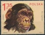 Poland 1972 Zoo Animals d