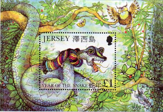 Jersey 2001 Year of the Snake g