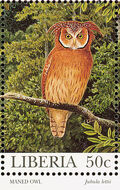 Liberia 1997 Native Owls e