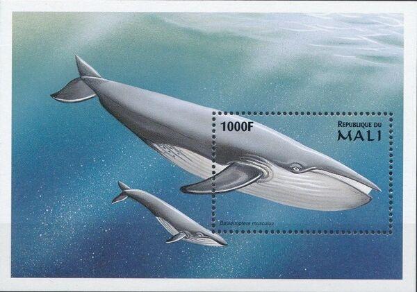 Mali 1997 Marine Life zs