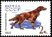 Soviet Union (USSR) 1965 Hunting and Service Dogs b
