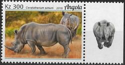 Angola 2018 Wildlife of Angola - Rhinos b
