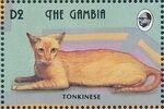 Gambia 1993 Oriental Cats f