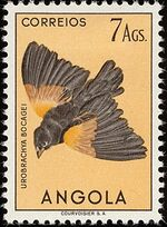 Angola 1951 Birds from Angola p