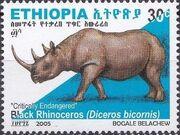 Ethiopia 2005 Black Rhinoceros f