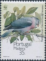 Madeira 1991 WWF Trocaz Pigeon a