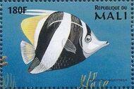 Mali 1997 Marine Life n