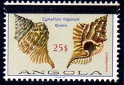 Angola 1981 Sea Shells Overprinted j