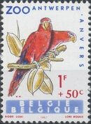 Belgium 1962 Birds of Antwerp Zoo b
