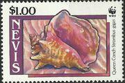 Nevis 1990 WWF Queen Conchs (Strombus gigas) d
