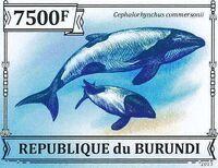 Burundi 2013 Dolphins n