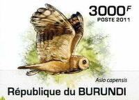 Burundi 2011 Owls of Burundi g