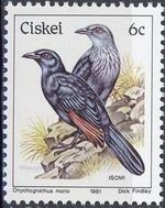 Ciskei 1981 Definitive - Birds f