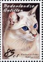 Netherlands Antilles 2003 Cats g