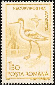 Romania 1991 Water birds c