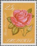 Albania 1967 Roses e