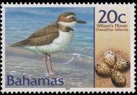 Bahamas 2001 Birds and Eggs d