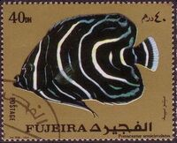 Fujeira 1972 Exotic Fishes d