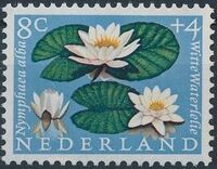 Netherlands 1960 Surtax for Child Welfare - Flowers c
