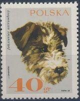 Poland 1969 Dogs b