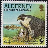 Alderney 2000 WWF Peregrine Falcon e
