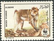 Algeria 1988 WWF - Barbary Macaque a