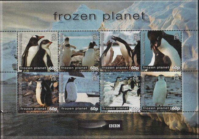 British Antarctic Territory 2011 Frozen Planet - Penguins Sa