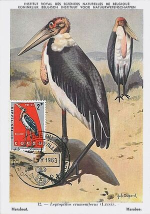 Congo, Democratic Republic of 1963 Protected Birds (1st Group) MCb