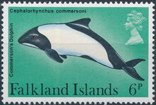 Falkland Islands 1980 Porpoises & Dolphins b