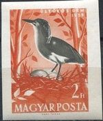 Hungary 1959 Water Birds ag
