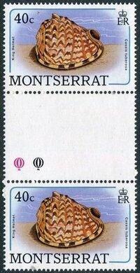 Montserrat 1988 Sea Shells gf