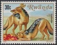 Rwanda 1981 Carnivorous Animals b