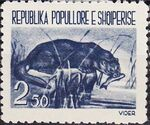 Albania 1961 Native Animals a