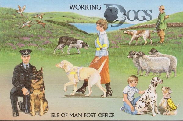 Isle of Man 1996 Dogs at Work pp