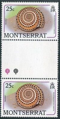 Montserrat 1988 Sea Shells ge