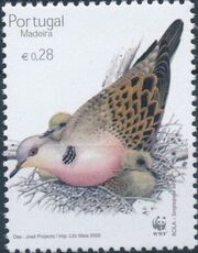Madeira 2002 WWF Birds from Madeira d