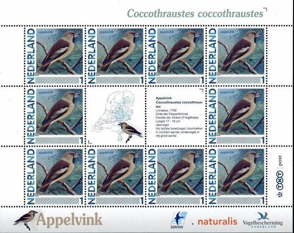 Netherlands 2011 Birds in Netherlands MS2